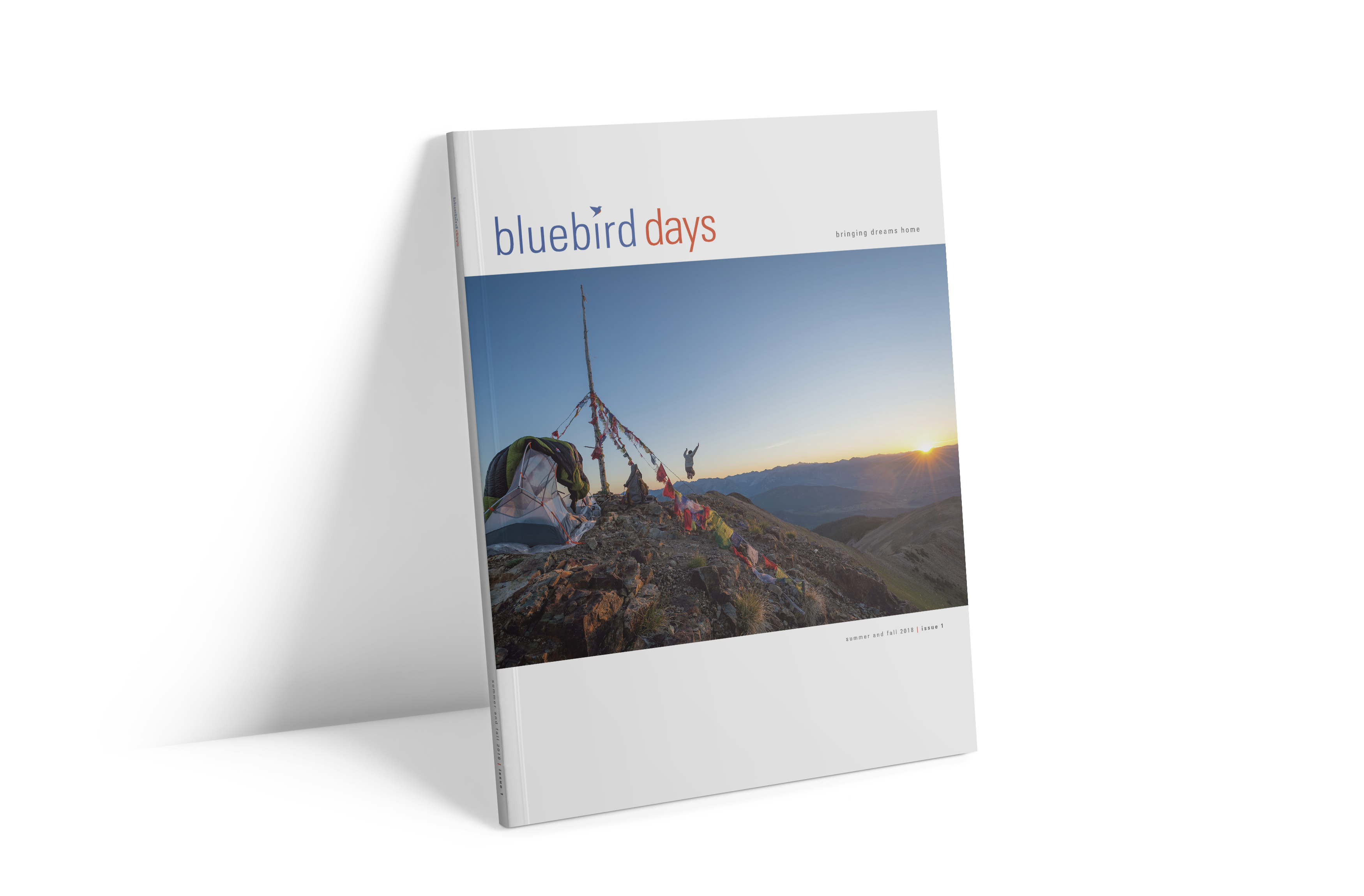 Bluebird Days Magazine